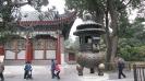 V templju